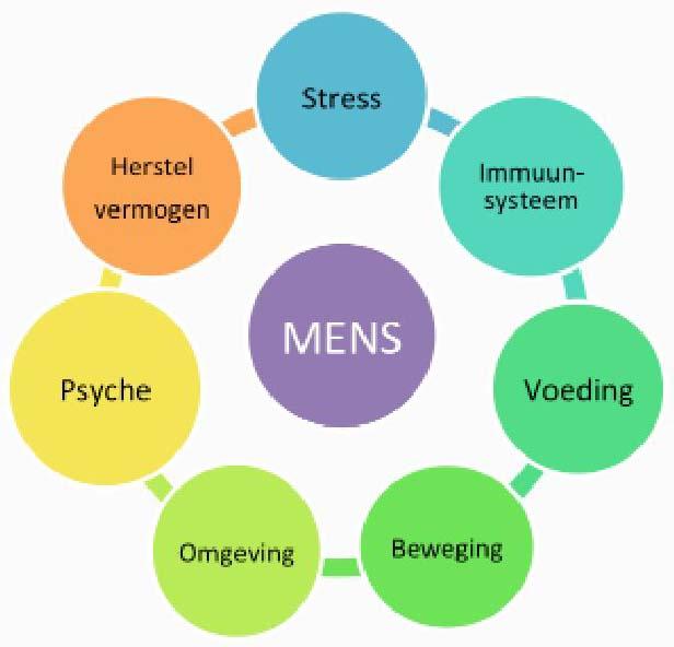 psyche beweging immuunsysteem stress voeding